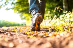 walk in nature to improve brain